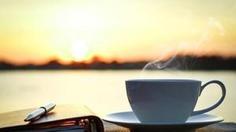 Bình yên nằm trong tâm trí vậy mà người người không biết cứ sốt sắng tìm kiếm từ bên ngoài