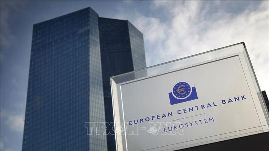ECB đau đầu trong kế hoạch cải cách chính sách tiền tệ lớn nhất trong gần 20 năm