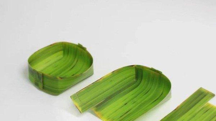 Lá chuối làm thành khay đựng đồ ở Hàn Quốc, giá hơn nửa triệu đồng/set