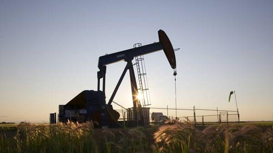 Giá dầu tại thị trường London đi xuống đầu phiên 17/6