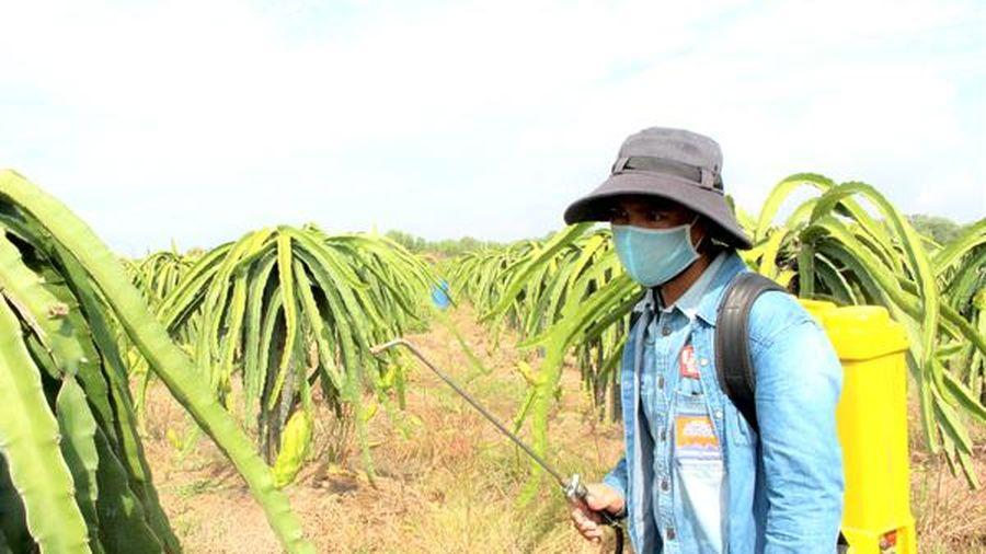 Sản xuất nông nghiệp vẫn lạm dụng thuốc bảo vệ thực vật