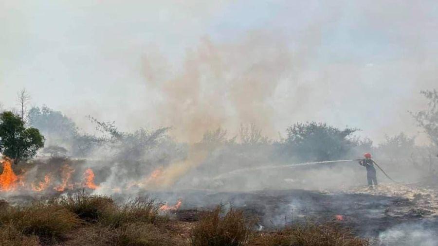 Một số vấn đề rút ra từ vụ cháy rừng ở xã Ngư Thủy Bắc (Lệ Thủy)