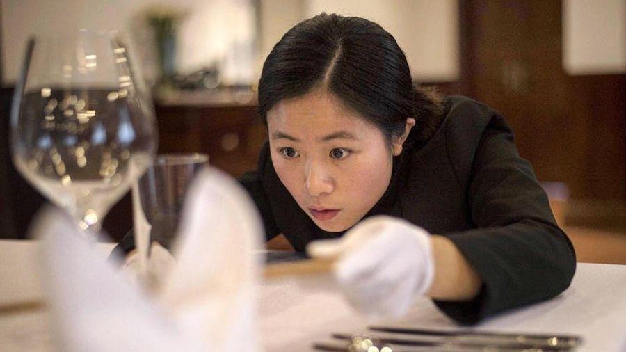 Cung cấp osin có bằng đại học, công ty Trung Quốc bị điều tra