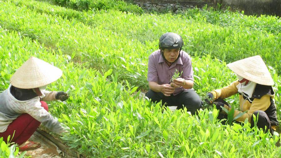 Kỷ niệm 96 năm Ngày Báo chí cách mạng Việt Nam: Tiếp sức xây dựng nông thôn mới