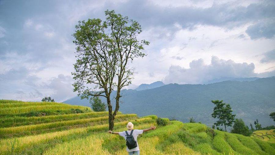 Người Việt mới, thích đi chơi đó đây hơn kiếm tình yêu đích thực