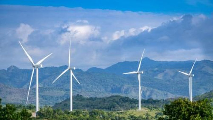 Quảng Bình chuyển đất rừng sang làm trang trại điện gió