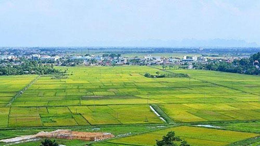 Làm rõ việc chuyển mục đích sử dụng đất trồng lúa, đất rừng để thực hiện dự án