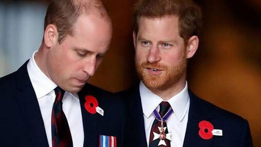 Hoàng tử William 'phát ngán với những drama quanh Harry'