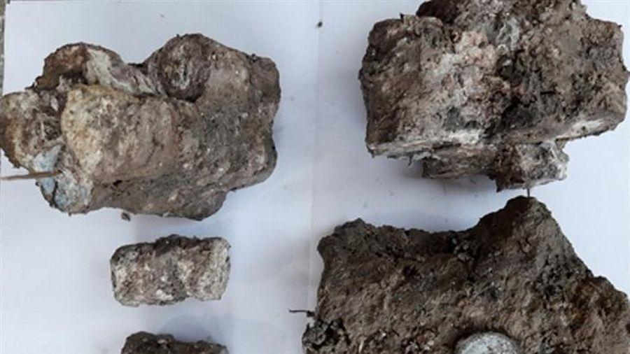 Thông tin về 'kho báu' tiền cổ ngư dân tỉnh Quảng Bình tìm thấy dưới đáy biển