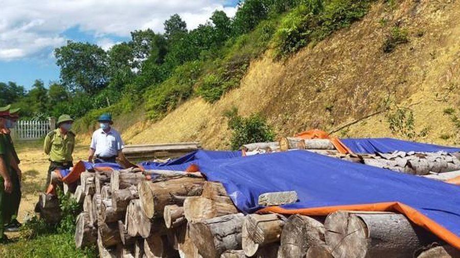 Bắt nhóm đối tượng phá rừng để khai thác đất hiếm ở Thanh Hóa