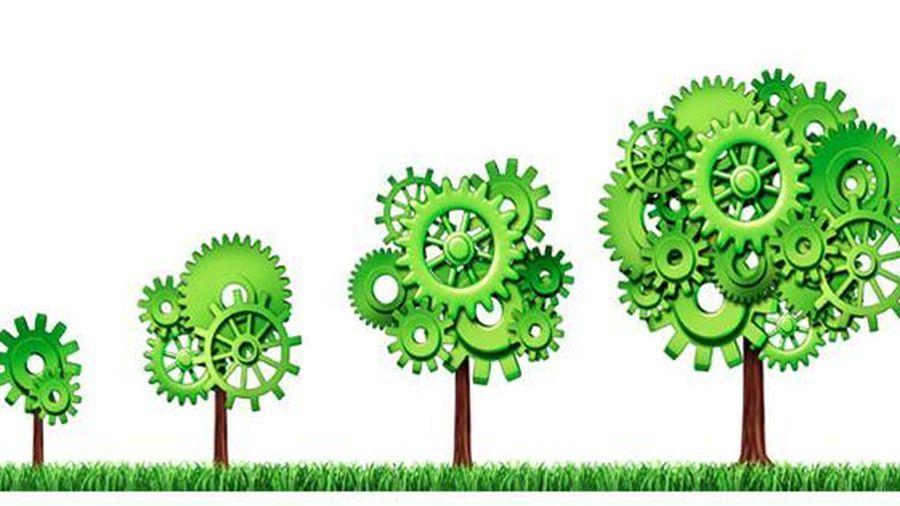 Kiểm toán giúp gia tăng giá trị doanh nghiệp và đảm bảo các yếu tố bền vững
