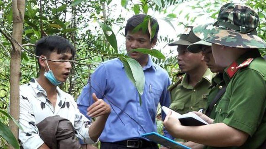 Nhân viên giữ rừng cầm đầu đường dây khai thác gỗ quý trái phép