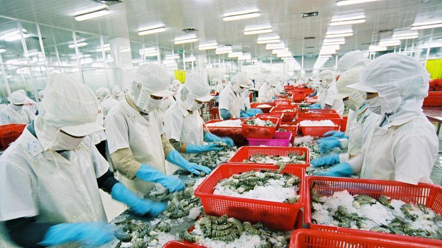 Một số kết quả hoạt động xuất nhập khẩu của Việt Nam giai đoạn 2016 – 2020