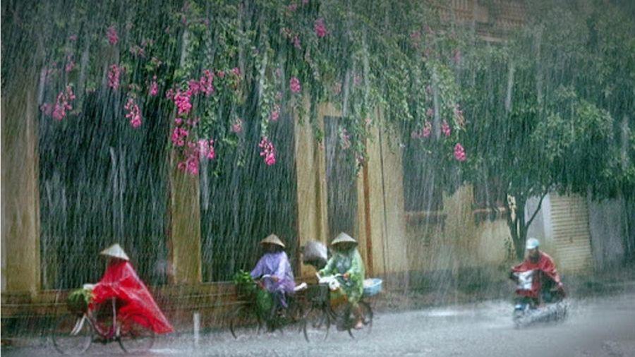 Những ngày mưa qua thành phố