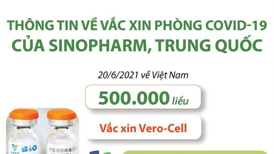 Infographic: Thông tin về vắc xin phòng COVID-19 của Sinopharm