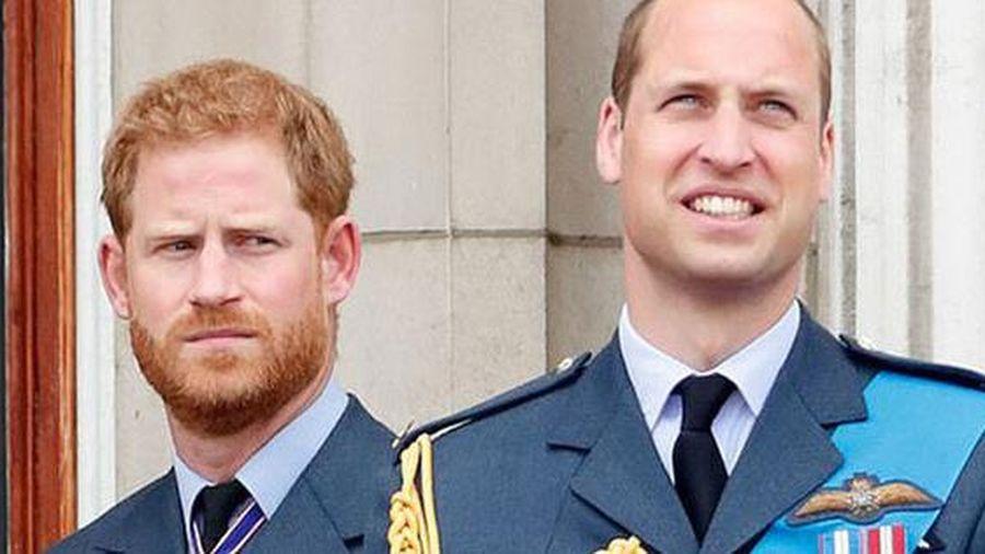 Hoàng tử Harry muốn có phóng viên riêng ở lễ khánh thành tượng Diana