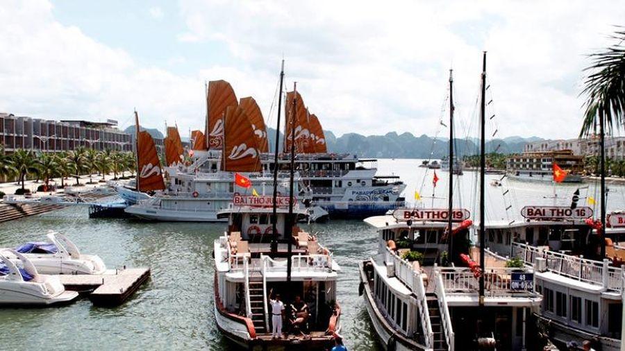 Khách du lịch giảm mạnh, đội tàu du lịch Hạ Long đứng trước nguy cơ phá sản