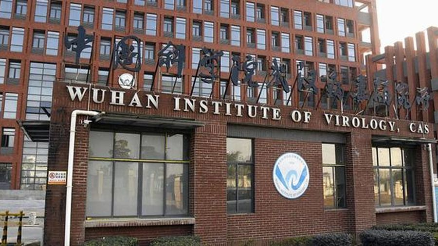 Viện Virus học Vũ Hán lọt tốp ứng viên xuất sắc vì nghiên cứu Covid-19