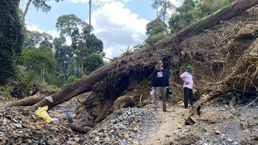 Quảng Nam tổ chức lực lượng đánh sập 75 hầm vàng trong Vườn Quốc gia Sông Thanh