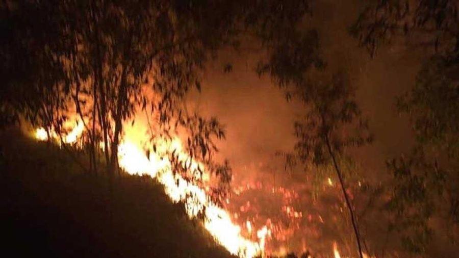 Bắc Giang: Cảnh báo nhiều khu vực nguy cơ cháy rừng ở mức cực kỳ nguy hiểm