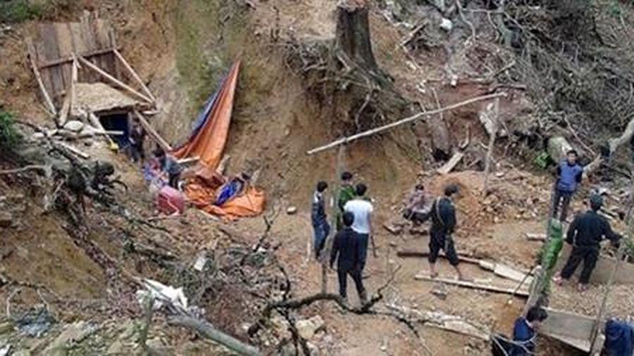 Đánh sập 75 hầm vàng trong Vườn Quốc gia Sông Thanh