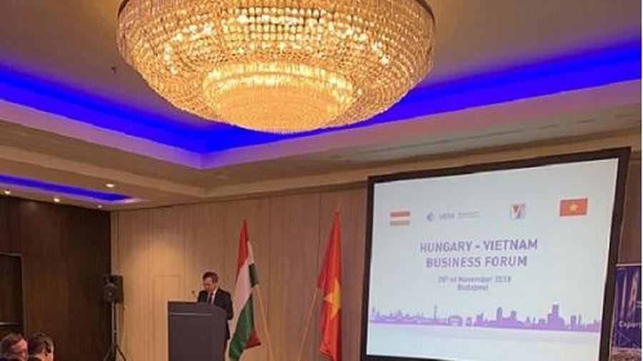 Tích cực hỗ trợ doanh nghiệp Việt Nam – Hungary kết nối hợp tác