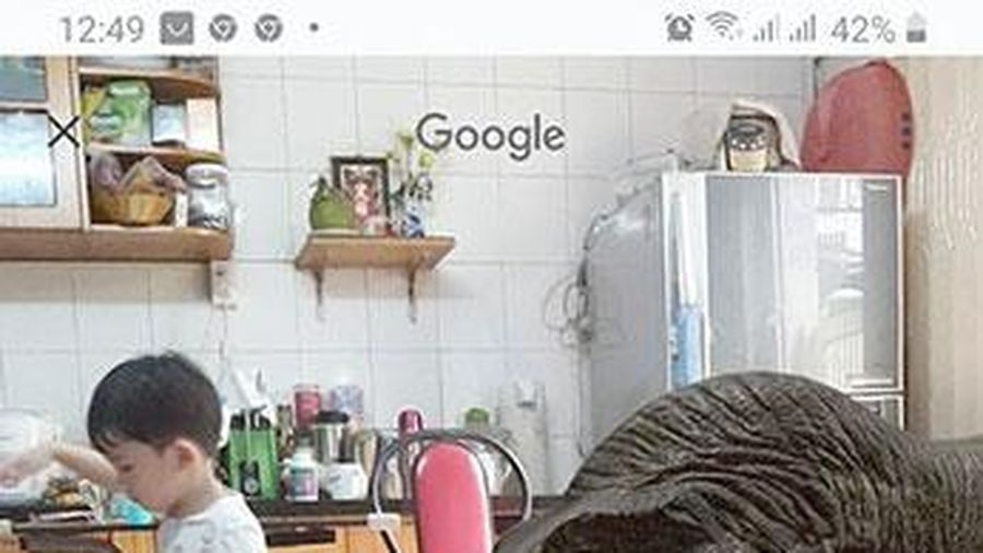 Dùng Google để tìm khủng long trong nhà bạn