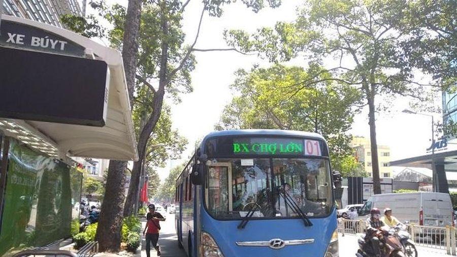 TP Hồ Chí Minh bổ sung 141 tỷ đồng hỗ trợ giá xe buýt