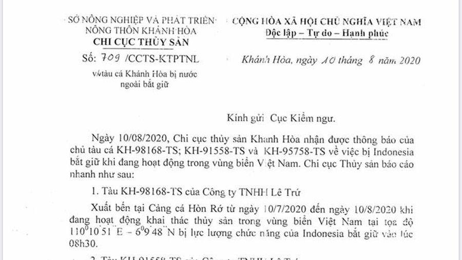 3 tàu cá bị Indonesia bắt giữ khi hoạt động vùng biển Việt Nam